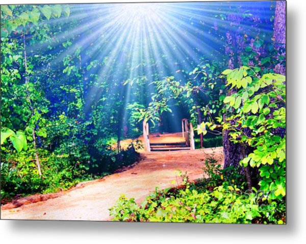 Rays Of Light To Guide The Path Metal Print