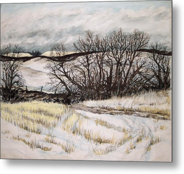 Reardon Wa Fields Metal Print