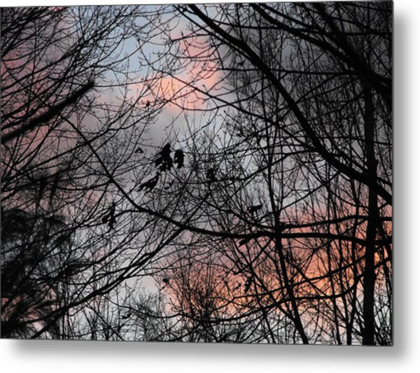 Red At Night Metal Print by Penny Homontowski