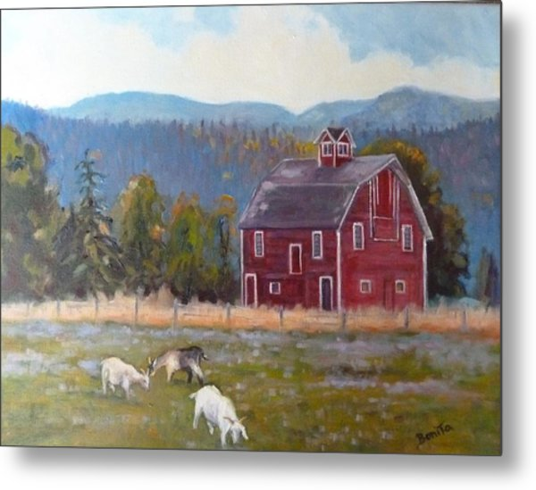 Red Barn In Montana Metal Print