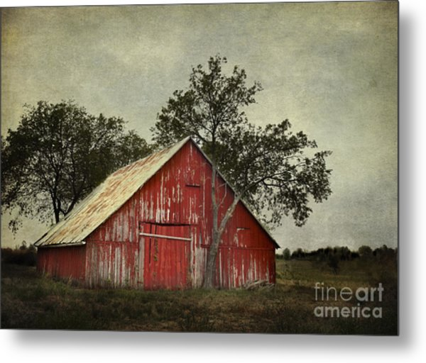 Red Barn With A Tree Metal Print