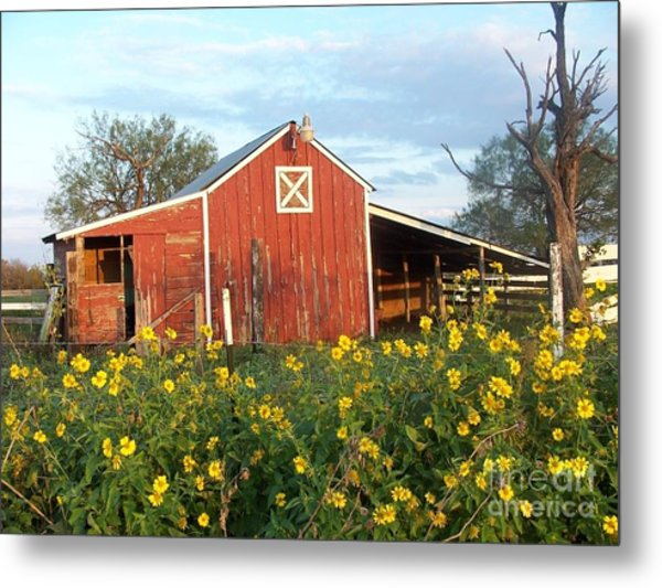Red Barn With Wild Sunflowers Metal Print