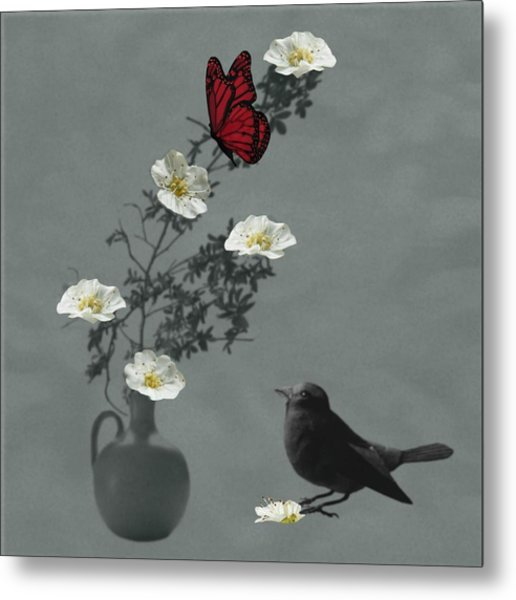 Red Butterfly In The Eyes Of The Blackbird Metal Print