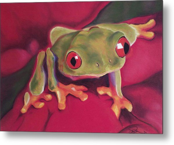 Red-eyed Tree Frog On Red Foliage Metal Print