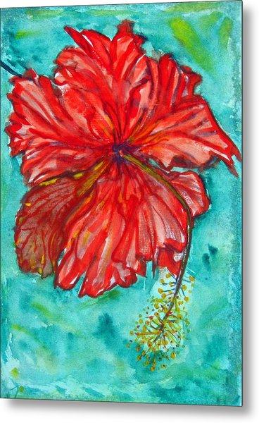 Red Hibiscus Flower Metal Print by Kelly     ZumBerge
