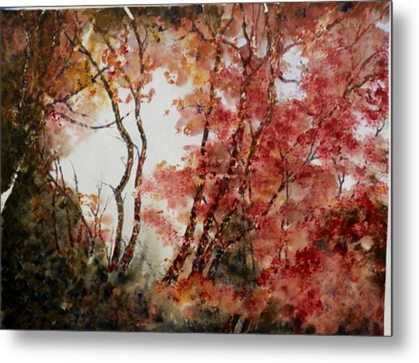 Red Hollow Metal Print