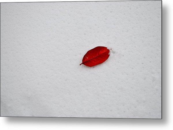 Red Leaf Snow Metal Print