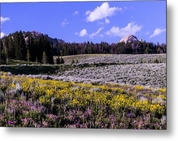 Red Lodge Spring Metal Print by Rebecca Adams