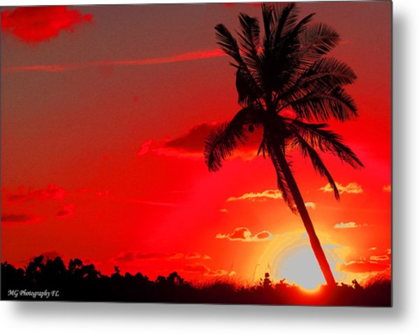Red Palm Metal Print