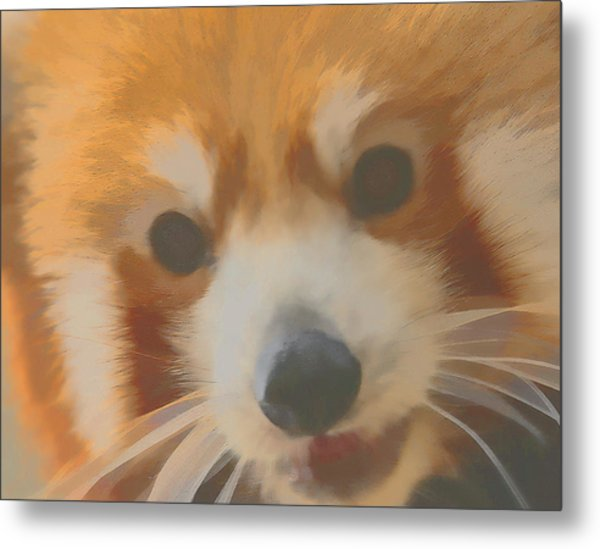 Red Panda Up Close Metal Print