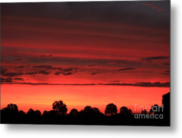 Red Red Sunrise Metal Print