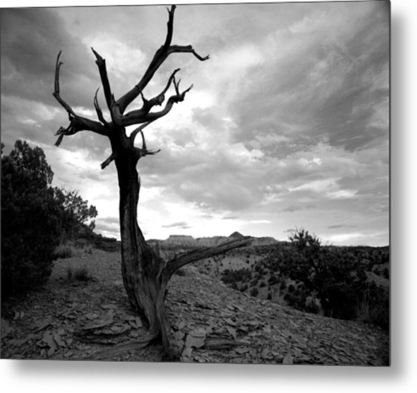 Red Rocks Dead Tree Metal Print