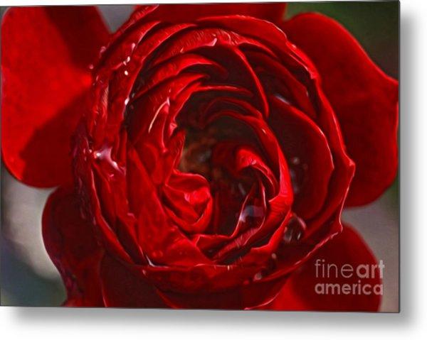 Red Rose Metal Print by Nur Roy