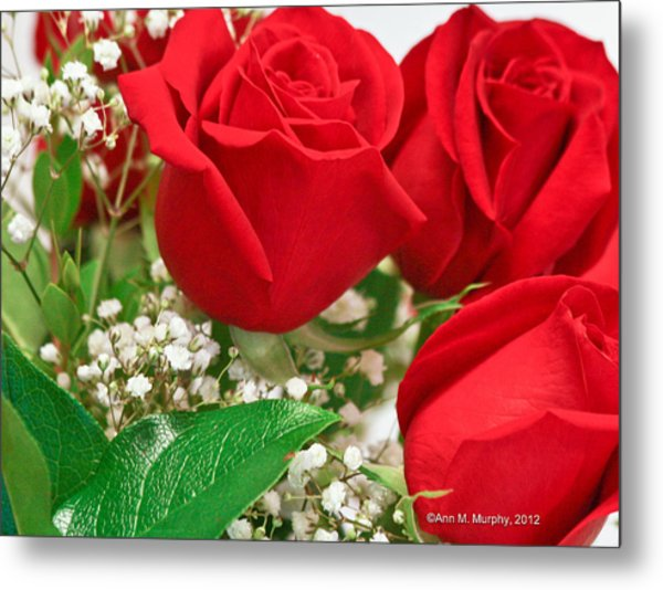 Red Roses With Baby's Breath Metal Print