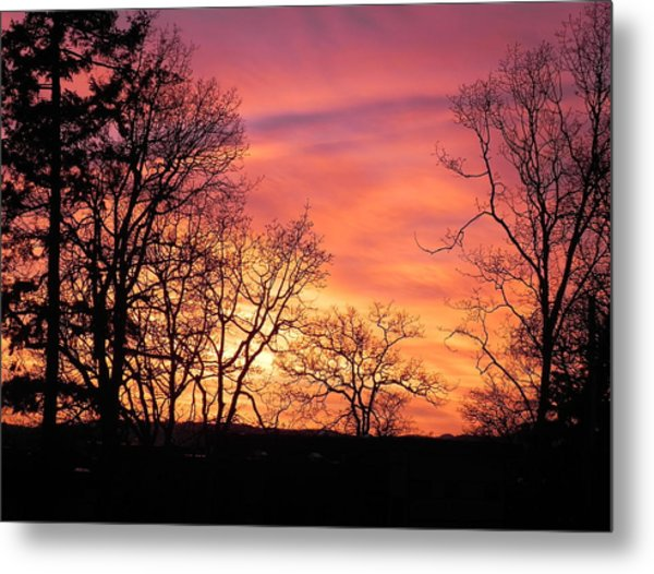 Red Sky At Night Sailor's Delight Metal Print
