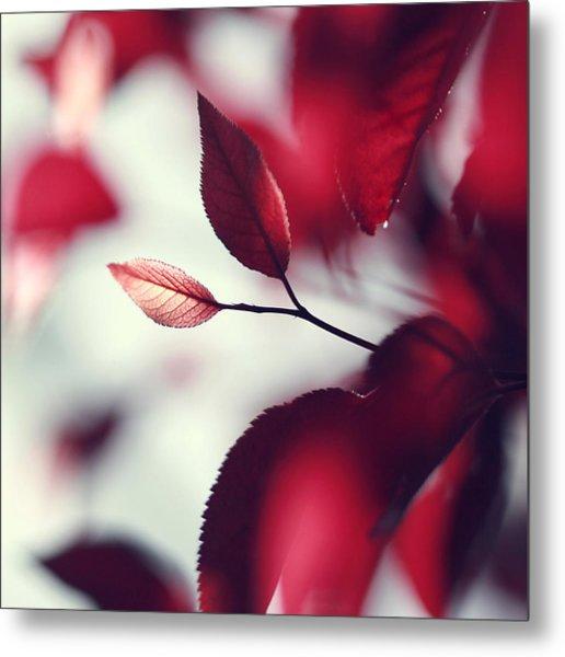 Red Spring Metal Print by Beata  Czyzowska Young
