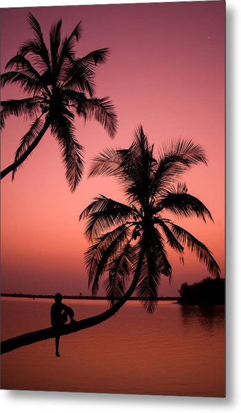 Red Sunset In The Tropics Metal Print