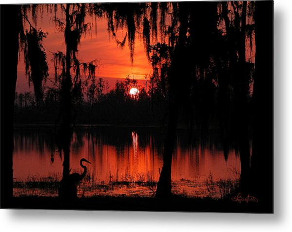 Red Swamp Metal Print