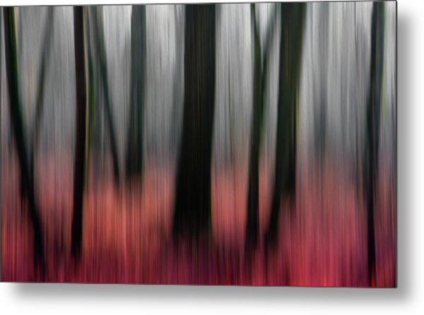Red Wood Metal Print