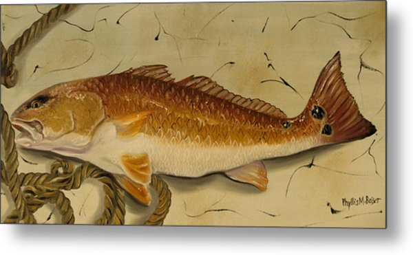 Redfish In The Boat Metal Print