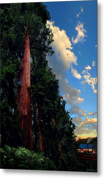 Redwood Cabin Metal Print by Ric Soulen