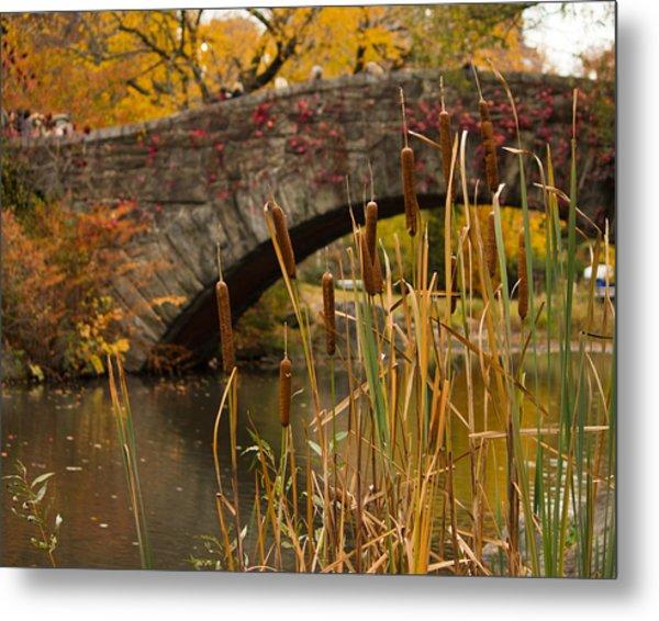 Reeds And Gapstow Bridge Metal Print