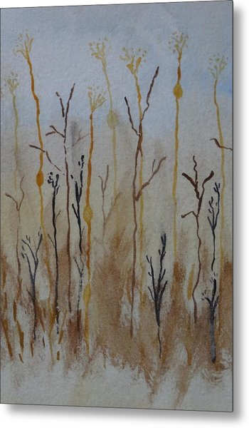 Reeds And Weeds Metal Print by Catherine Arcolio