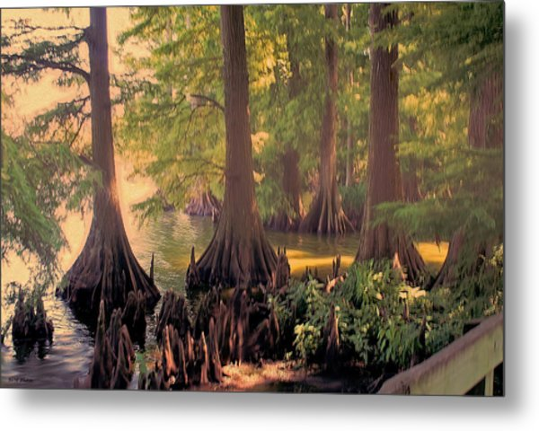 Reelfoot Lake At Sunset Metal Print