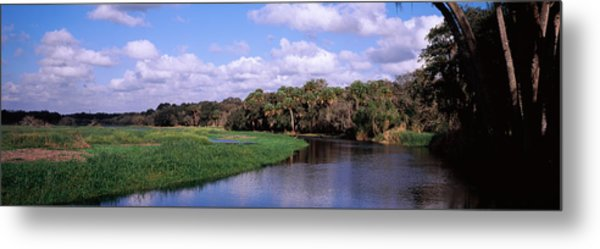 Reflection Of Clouds In A River, Myakka Metal Print