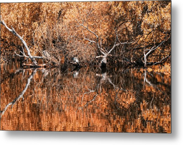 Reflections 11 Metal Print by Vessela Banzourkova