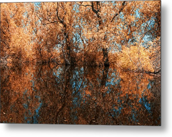 Reflections 6 Metal Print by Vessela Banzourkova