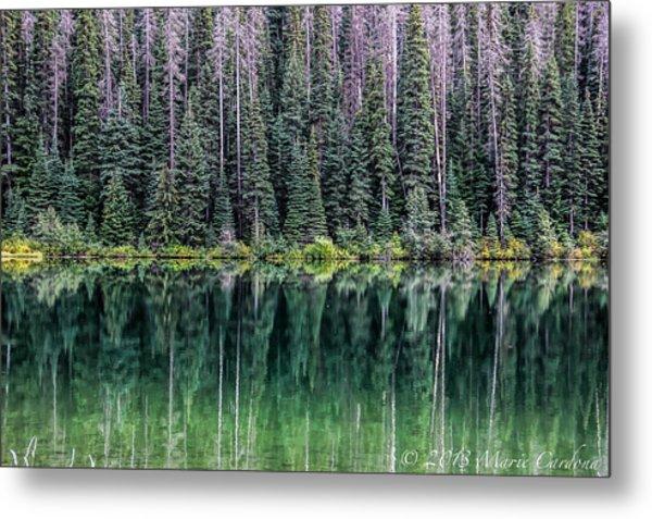 Reflections At Lightning Lake Metal Print by Marie  Cardona