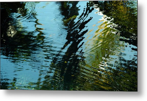 Reflections In A Fishpond Metal Print