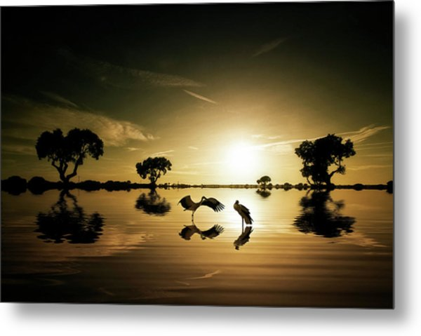 Reflections In The Lake Metal Print