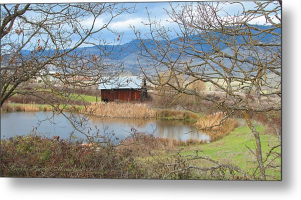 Reflections On A Cloudy Day Metal Print