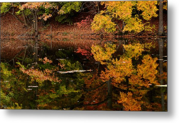 Reflective Colors Metal Print