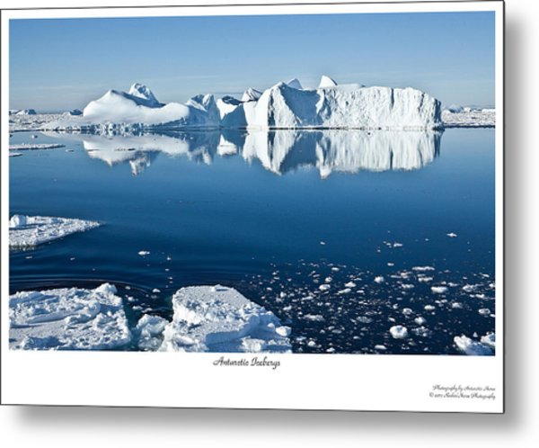 Reflective Icebergs Metal Print by David Barringhaus