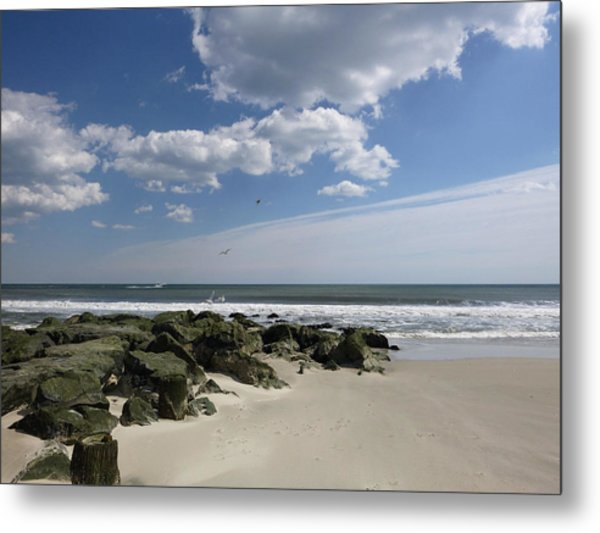 Rejoicing In The Day Metal Print