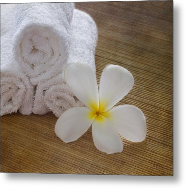 Relax At The Spa Metal Print
