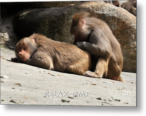Relax Time Metal Print