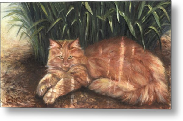 Relief From The Heat Metal Print by Terri  Meyer