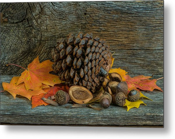 Remnants Of Fall Metal Print