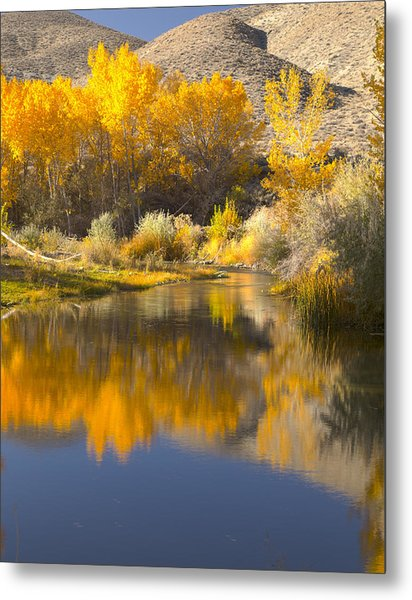 Restful Waters Metal Print