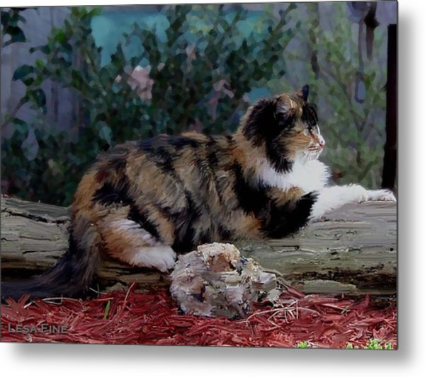 Resting Calico Cat Metal Print