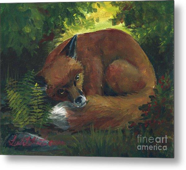 Resting Red Fox Metal Print