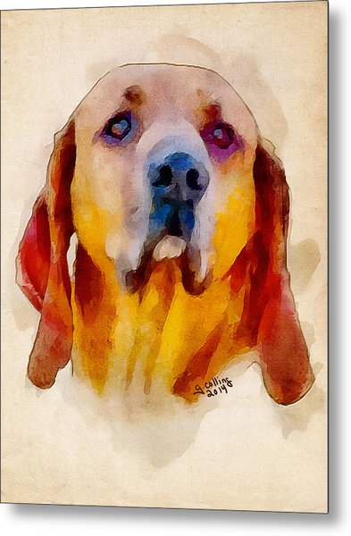 Retriever Metal Print