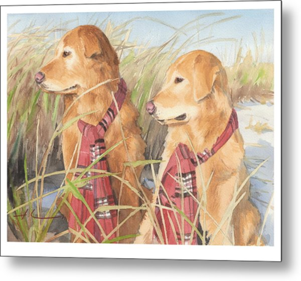 Retrievers In Dunes Watercolor Portrait Metal Print by Mike Theuer