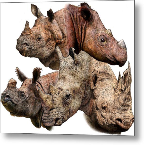 Rhino Collage Metal Print