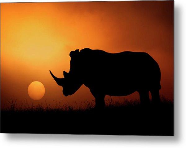 Rhino Sunrise Metal Print by Mario Moreno