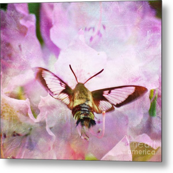 Rhododendron Dreams Metal Print